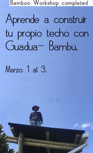 curso de Guadua2